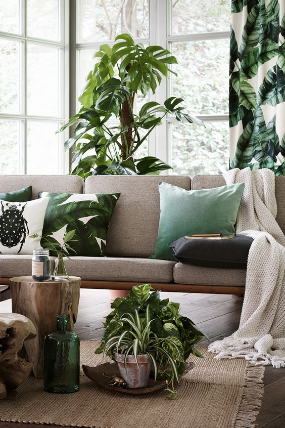 green plants bedroom inspiration